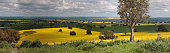 Miles and miles of countryside views....  Rural panorama of farmlands across  Bumbaldry and Greenthorpe in Central West NSW
