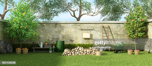 Rural garden in a sunny day : Stock Photo