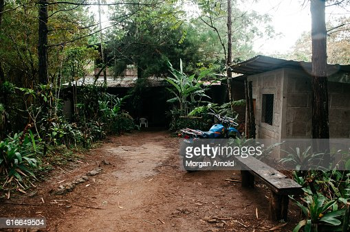 A rural home in a cloud forest : Stock Photo