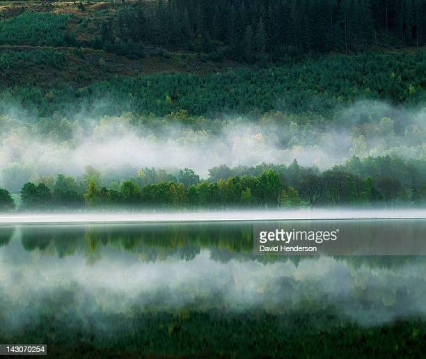 Rural landscape cloaked in fog