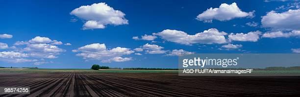 Rural landscape. Nakasatsunai, Hokkaido Prefecture, Japan