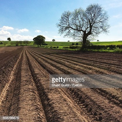 Rural Landscape, Plowed Field