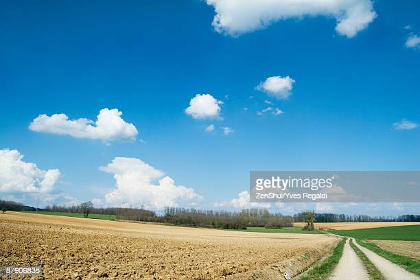 Rural landscape with dirt road