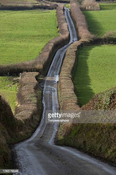 Rural lane in countryside, UK