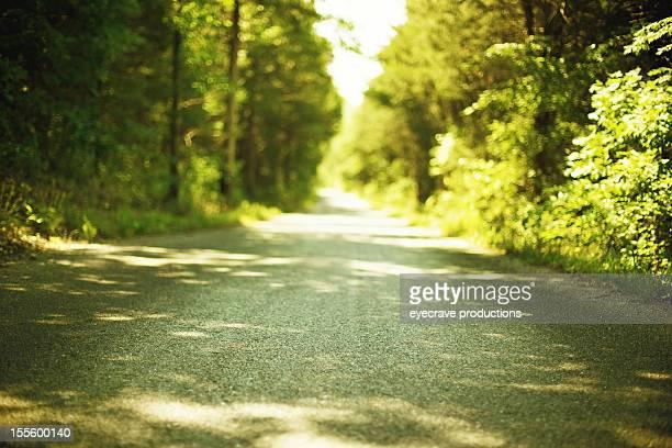 rural Missouri road with vanishing point