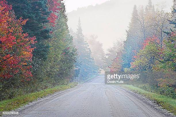 Rural Road and Fall Color