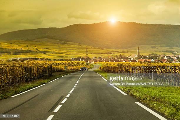 Rural road between vineyards on route des vins dAlsace, France