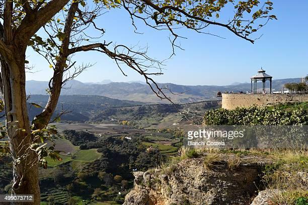 Rural scene and gazer in Ronda, Spain