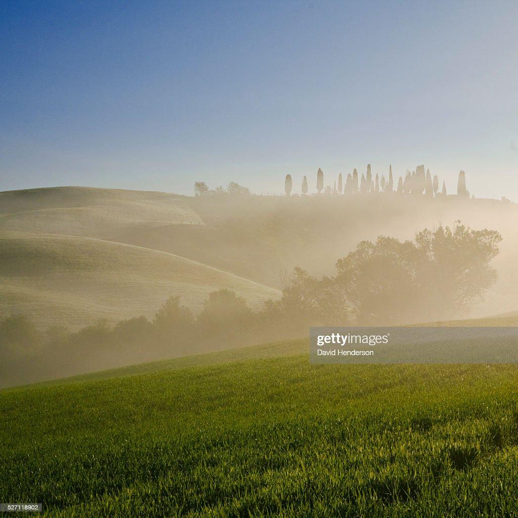 Rural scene at sunrise : Stockfoto
