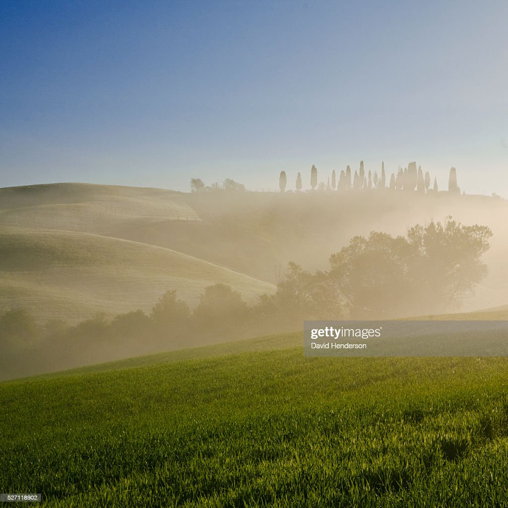 Rural scene at sunrise : Stock Photo