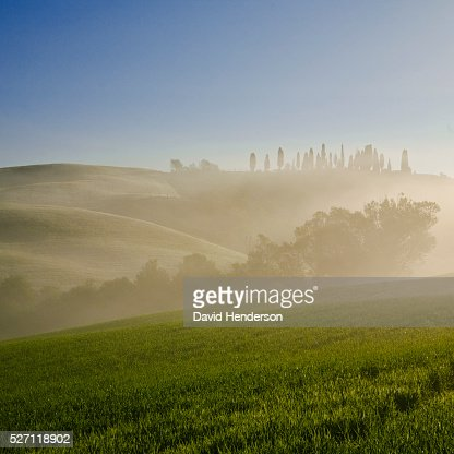 Rural scene at sunrise : Stock Photo