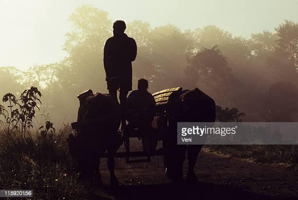 Rural scene in India