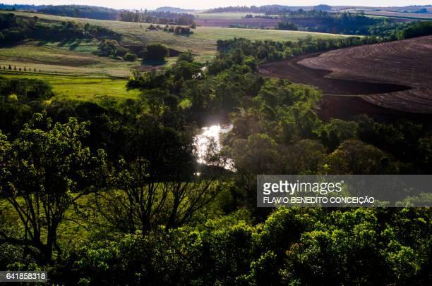 Rural scene in Londrina in Brazil