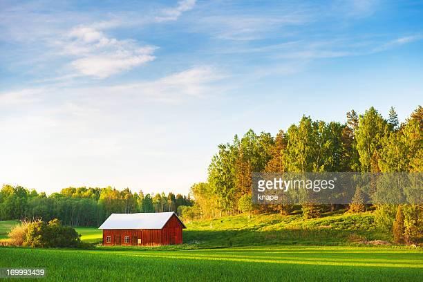 Rural scene in Sweden