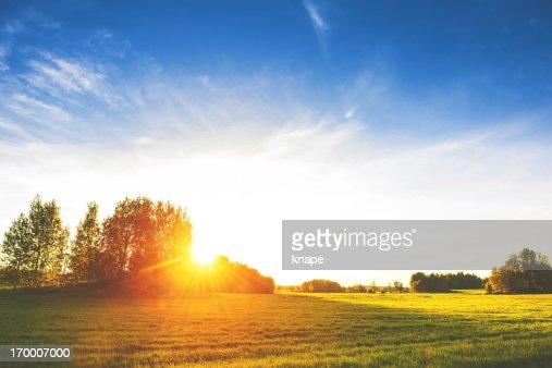 スウェーデンの田園風景