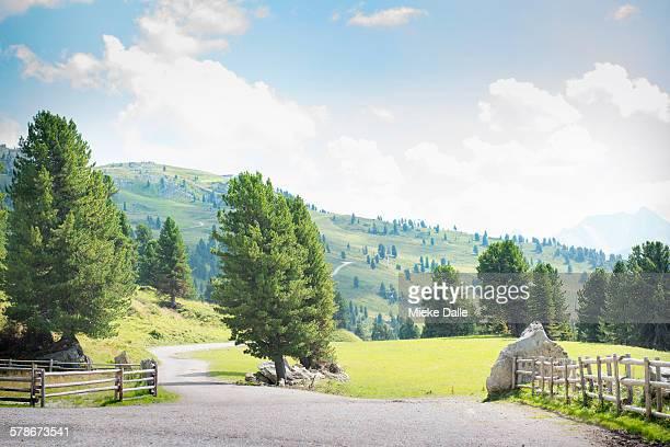 Rural scene in Tirol