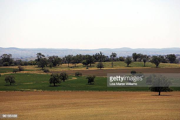 A rural view from the Mercer's country home called 'Barina' which is part of the Rentafarmhouse scheme where families can rent a farmhouse in need of...