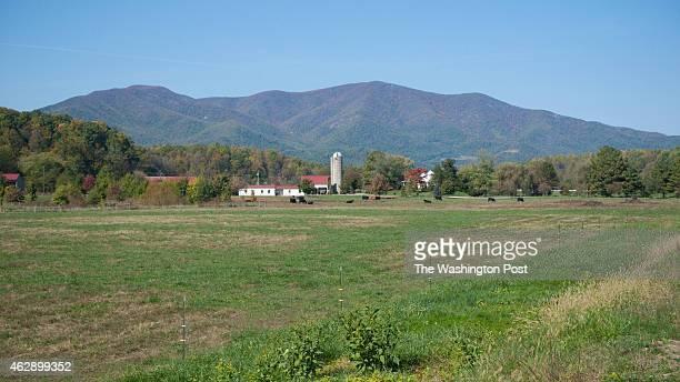 Rural Virginia Countryside Nelson County Va Stephanie Gross FTWP 4349622019
