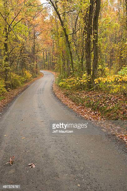 A rural Virginia road in autumn.
