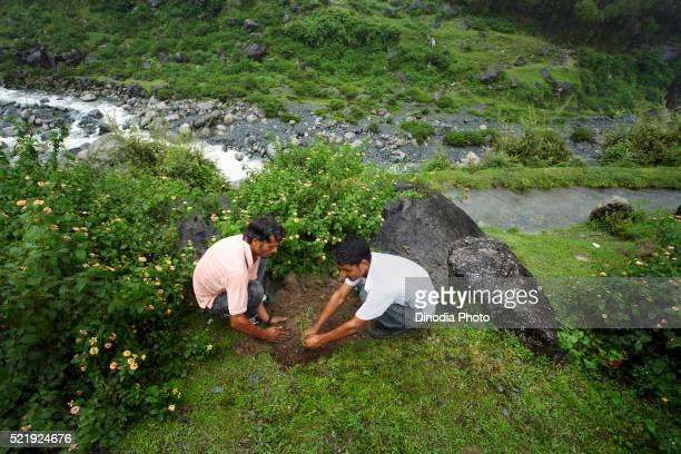 Rural youth engaged in tree plantation environmental awareness initiative started NGO Chinmaya Organization Rural Development