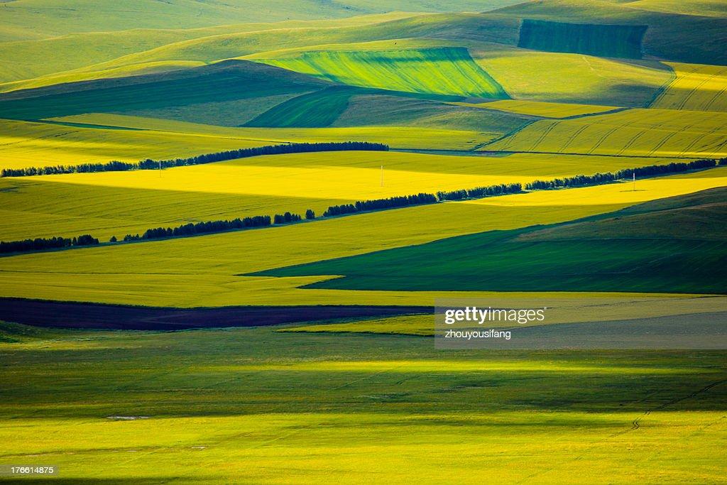 Rurality : Stock Photo
