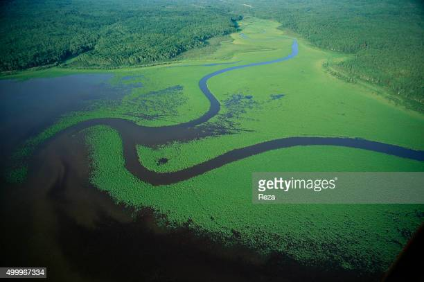 1999 Russia Aerial view of the Amur River the border between China and Russia Rising in the hills of Western Manchuria the Amur is the last undammed...