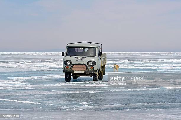 Russia, Lake Baikal, pickup truck and Siberian Husky on frozen lake