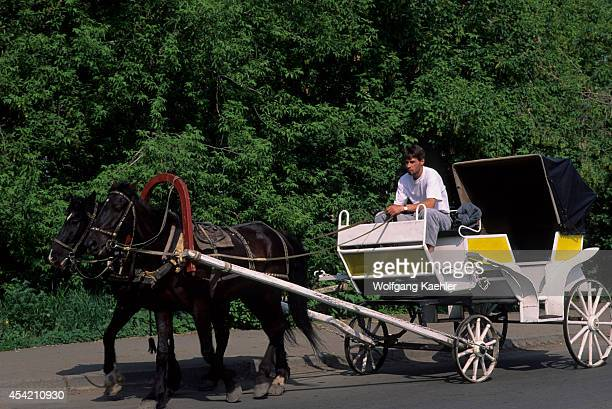 Russia Siberia Irkutsk Horse Carriage