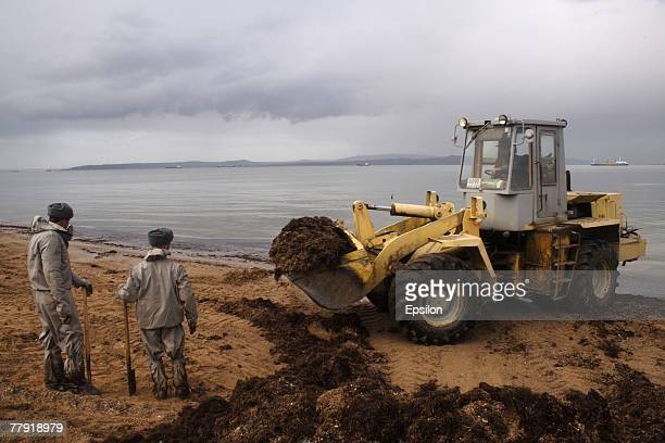 Russian Emergency Ministry soldiers remove oil pollution from the Black Sea shore near the southern port of Kavkaz November 14 2007 A severe storm...