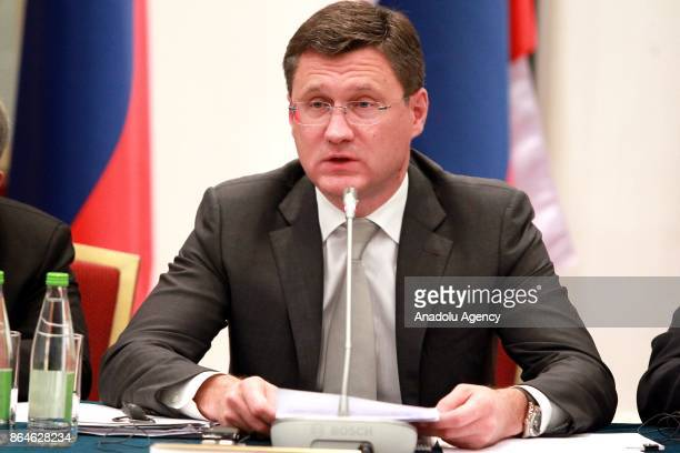 Russian Energy Minister Aleksander Novak and Turkish Economy Minister Nihat Zeybekci attend the TurkishRussian Intergovernmental Joint Economic...