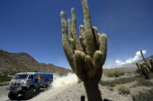 Russian Kamaz driver Anton Shibalov competes during the Stage 6 of the Dakar 2014 between Tucuman and Salta Argentina on January 9 2014 AFP PHOTO /...