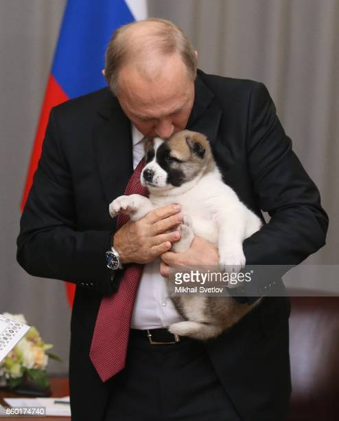 Russian President Vladimir Putin caresses his new Central Asian Shepherd puppy presented to him by Turkmen President Gurbanguly Berdymuhakmedov...