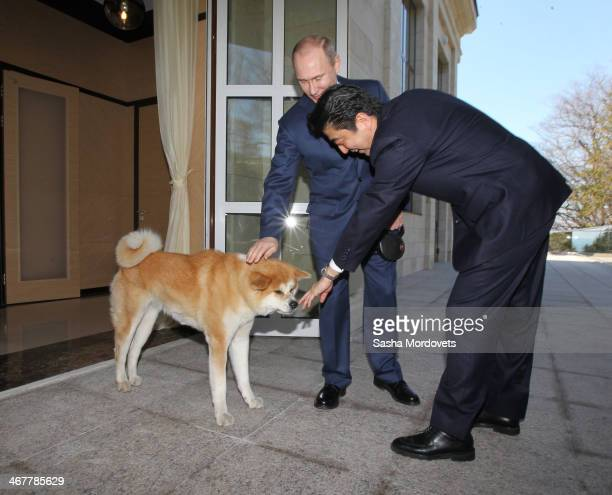 Russian President Vladimir Putin with his dog Yume greets Japanese Prime Minister Shinzo Abe at the Bocharov Ruchey state residence on February 82014...