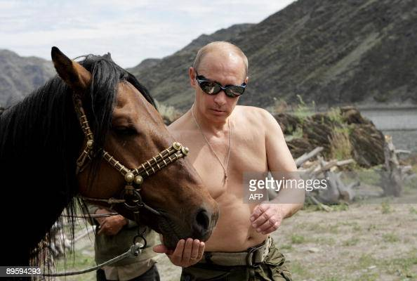 Russian Prime Minister Vladimir Putin is pictured with a horse during his vacation outside the town of Kyzyl in Southern Siberia on August 3 2009 AFP...