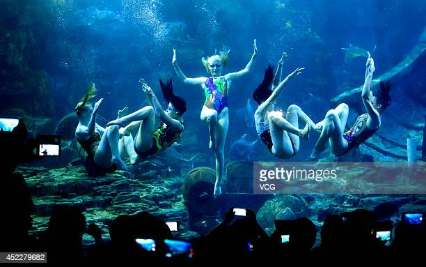 Russian synchronized swimmers from the Vladivostok City perform underwater ballet at the Donghu Sea World aquarium on July 17 2014 in Wuhan Hubei...