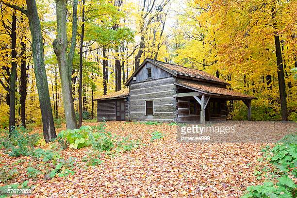 Rustic Cabin In Autumn Forest
