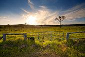 Rustic Gate, Australian Farmland