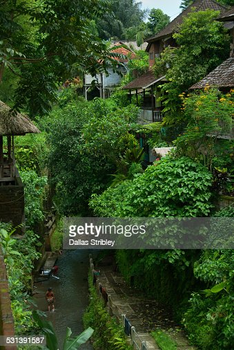 Rustic homes, lush vegetation and river in Ubud