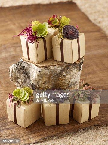 Rustic Party Favor Boxes