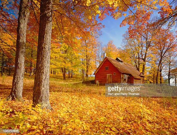 Rustic red cabin on a hill side among trees in autumn colors