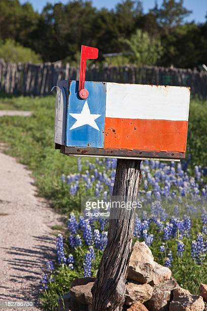 Rustic Texas flag mailbox on flower background