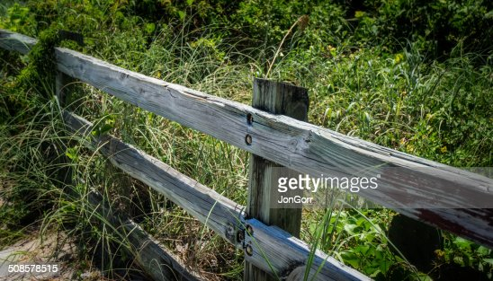 Rustic Weathered Wooden Country Fence Overgrown With Weeds : Bildbanksbilder