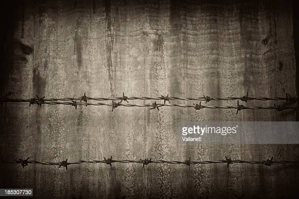 Rusty barbed wire grunge background