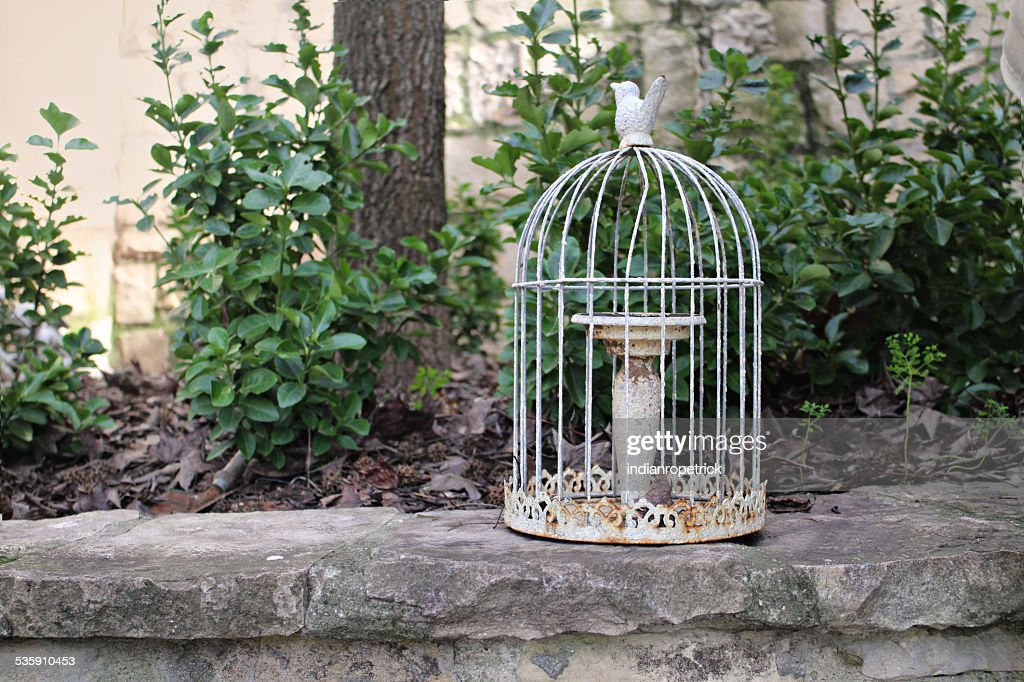 Rusty Birdcage : Stock Photo