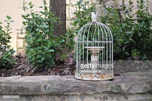 Rusty Birdcage : Stock Photo