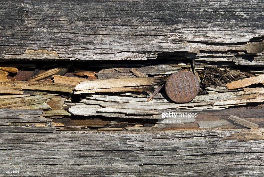 Rostige Nägel in alten Holz : Stock-Foto