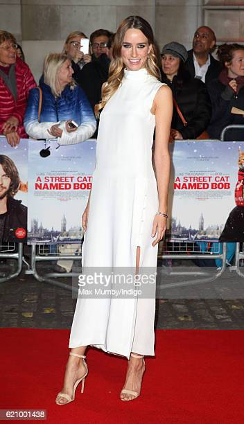 Ruta Gedmintas attends the UK Premiere of 'A Street Cat Named Bob' in aid of Action On Addiction at The Curzon Mayfair on November 3 2016 in London...