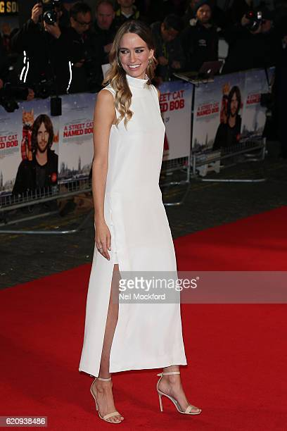 Ruta Gedmintas attends UK Premiere of 'A Street Cat Named Bob' in aid of Action On Addiction on November 3 2016 in London United Kingdom