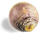 Rutabaga root on the white background