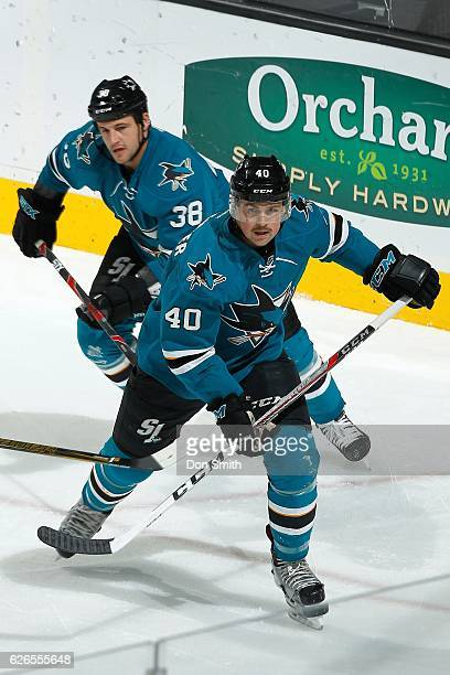 Ryan Carpenter and Micheal Haley of the San Jose Sharks look during a NHL game against the Arizona Coyotes at SAP Center at San Jose on November 29...